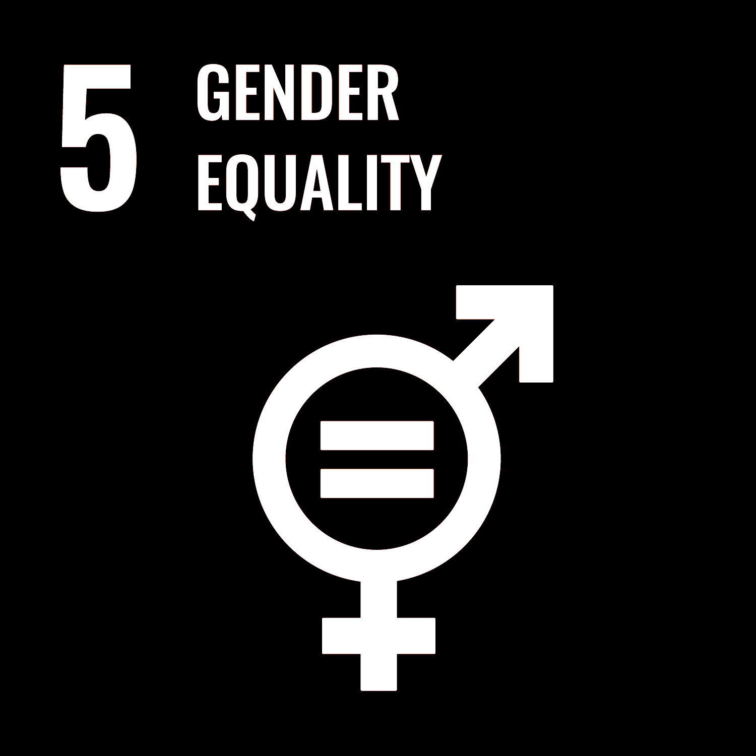 SERA HELSINKI Goals - Gender Equality